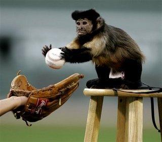monkey baseball